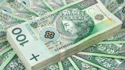 78 tys. zł średnia subwencja dla Mikro Firmy, 1,9 mln zł dla SME…